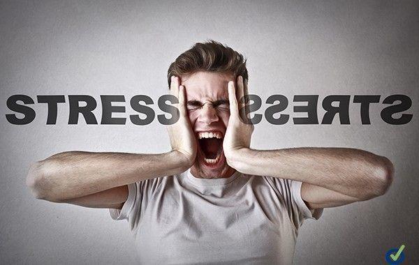 Descarga: Guía electrónica para la gestión del estrés y los riesgos psicosociales