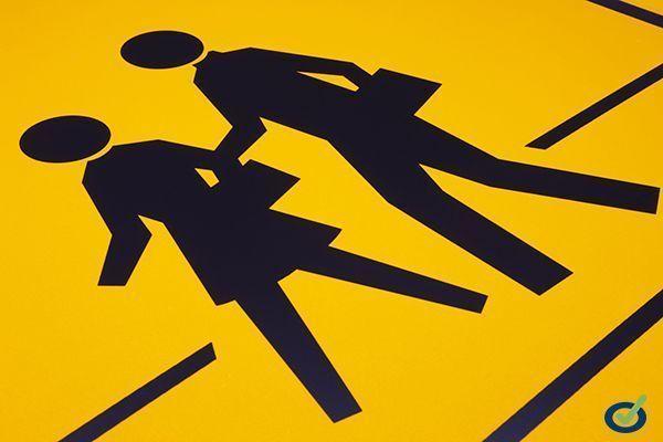 Descarga: Manual de Seguridad Peatonal
