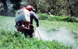 Cámara de Diputados: aprueban reformas para erradicar uso de plaguicidas