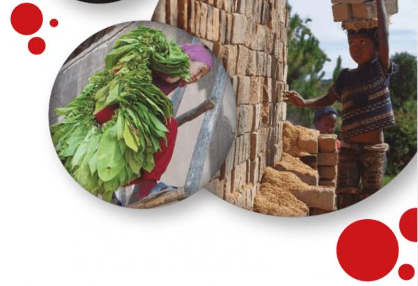 ¡Descarga! Eliminación urgente del trabajo infantil peligroso