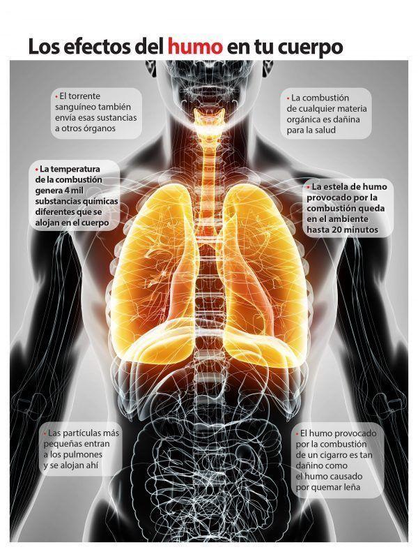 El humo y el tabaco