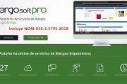 El primer software online para evaluar riesgos ergonómicos con la NOM-036-1-STPS-2018