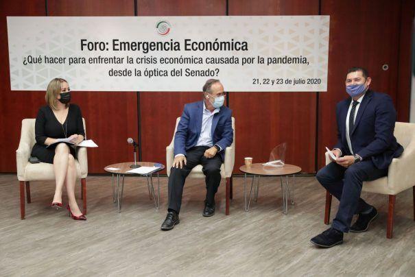 Analizan senadores y especialistas propuestas legislativas para enfrentar la emergencia