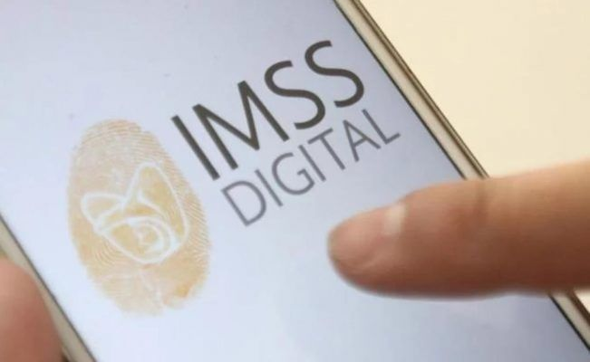 Contar con registro actualizado en el IMSS asegura el acceso a servicios de salud y seguridad social