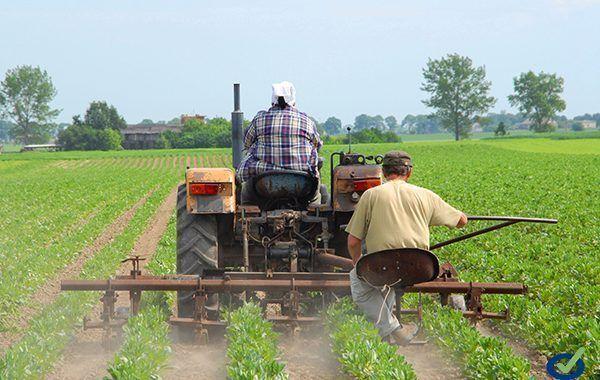 ¡Descarga! Seguridad y salud en la agricultura