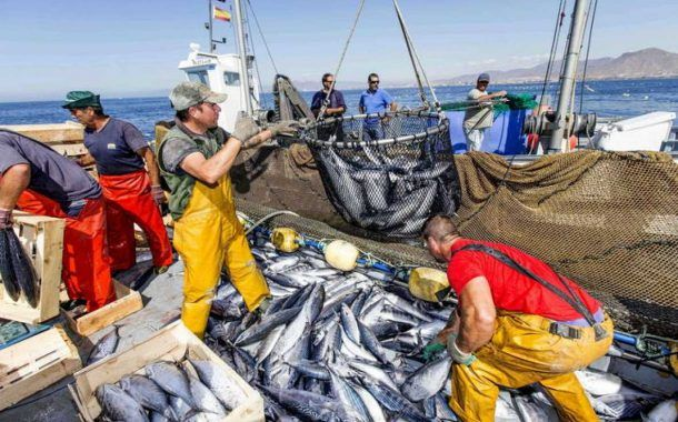 Convenio número 188 de la OIT promueve seguridad en la pesca
