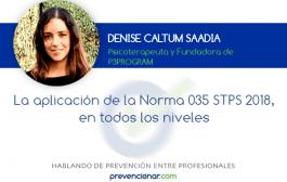 La aplicación de la Norma 035 STPS 2018, en todos los niveles