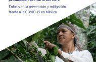 Protocolos de seguridad y salud en el trabajo en la cadena de valor del café. Énfasis en la prevención y mitigación frente a la COVID-19 en México.