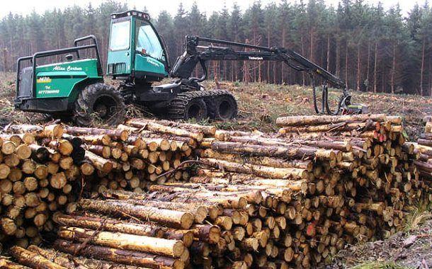 Video: Seguridad en la explotación forestal