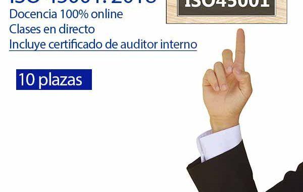 Curso Auditor Líder ISO 45001 - Modalidad OnLine - Mayo - 2 Últimos cupos