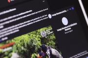 Inteligencia artificial a disposición de los caficultores mexicanos